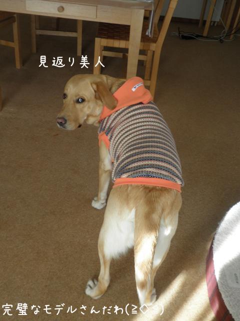 anzu2_20121015213419.jpg