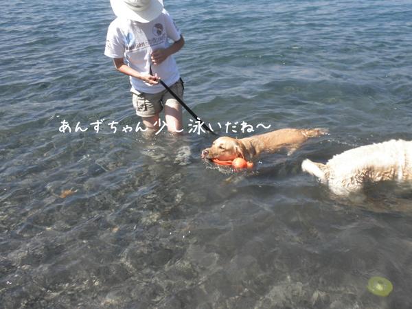 anzu_20120830221546.jpg