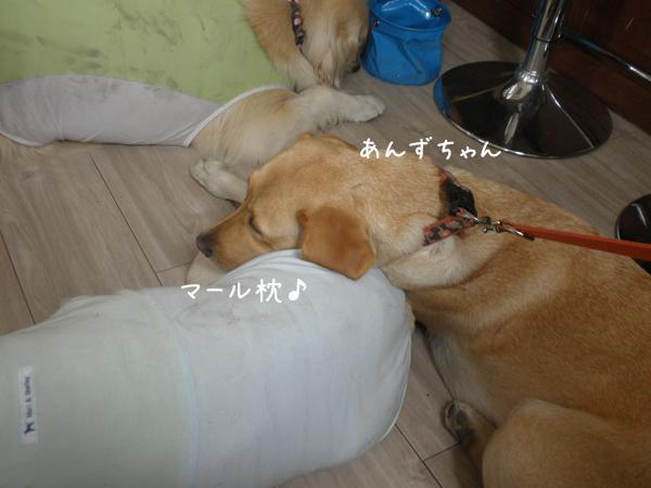 anzumaru.jpg