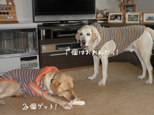 anzumaru2.jpg