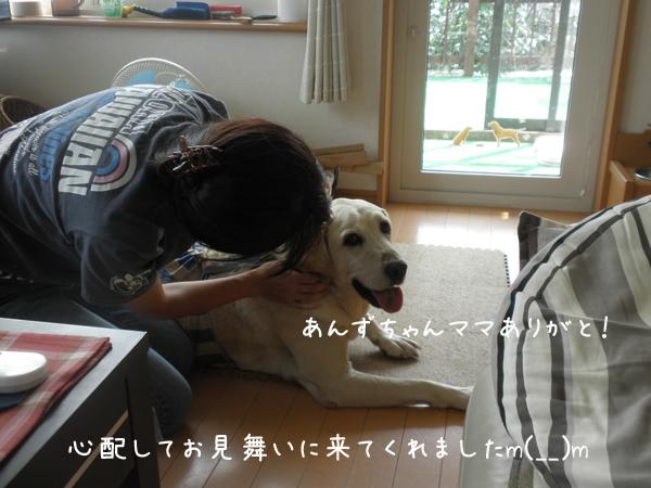 anzumaru_20120727211524.jpg