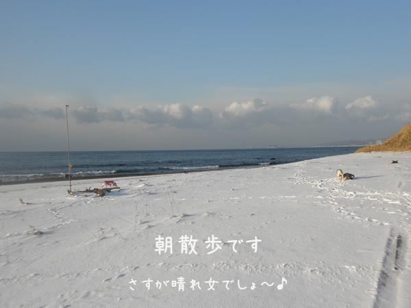 asa1_20130220135549.jpg