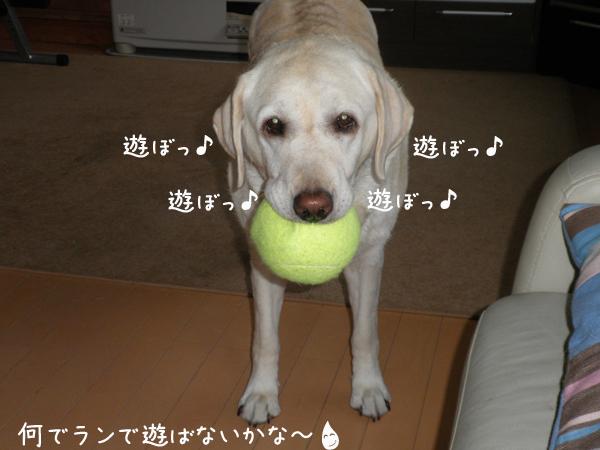 asobo_20120710222258.jpg