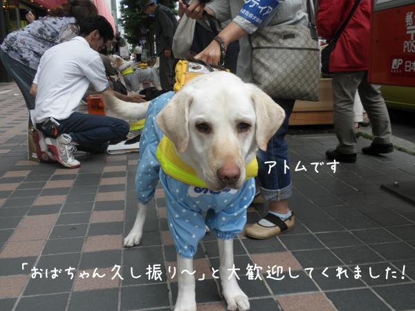atomu1_20120714214857.jpg