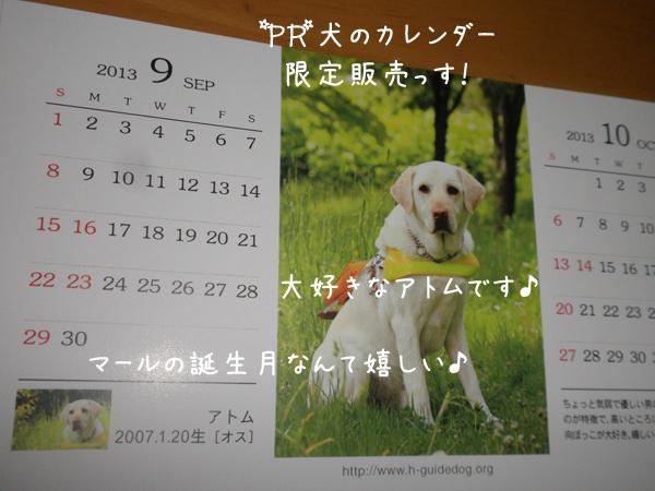 atomu_20120923191121.jpg