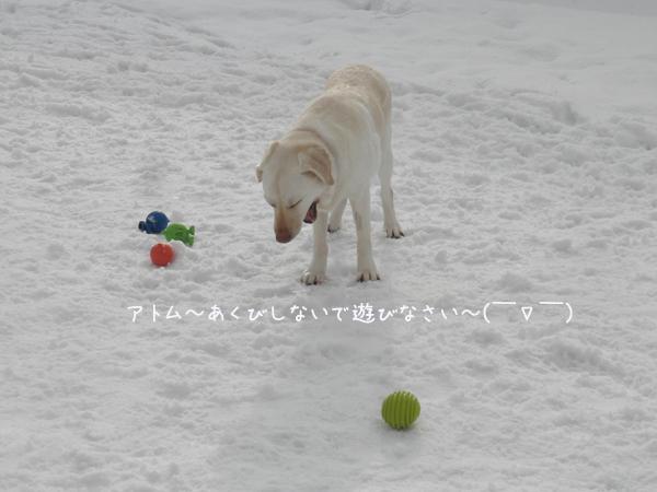 atomu_20130306214837.jpg