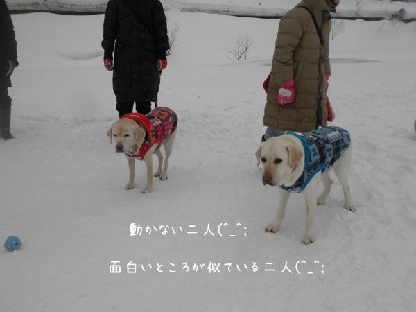 atomusyeri_20130301214209.jpg