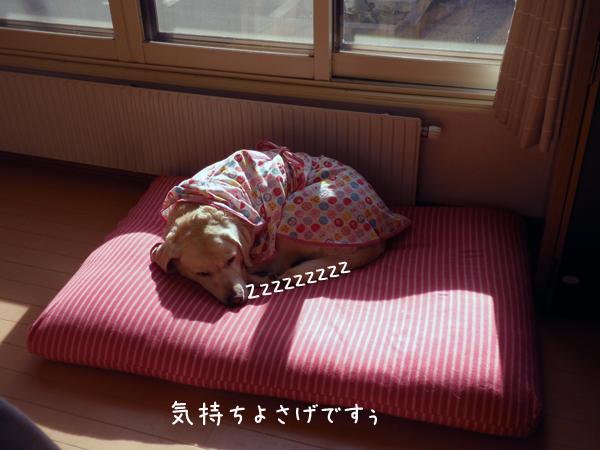 b4_20121027220350.jpg