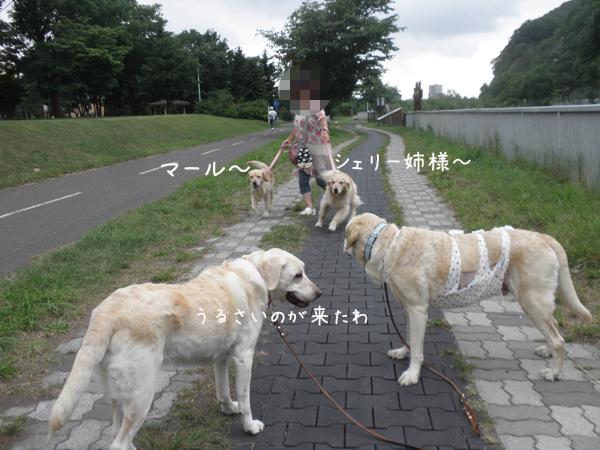 babara_20120722192856.jpg