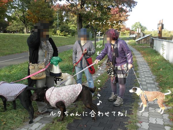 babara_20121027221701.jpg