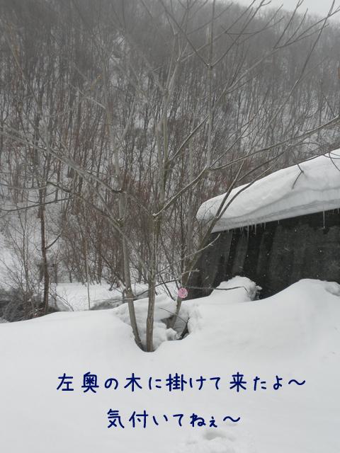ball_20130320195158.jpg