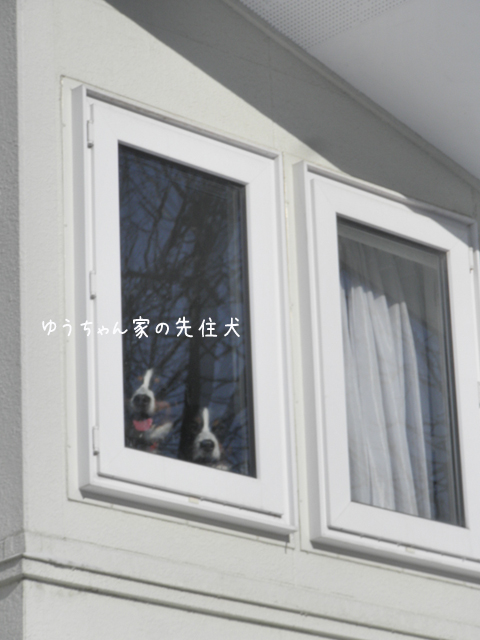 bani_20121219214912.jpg