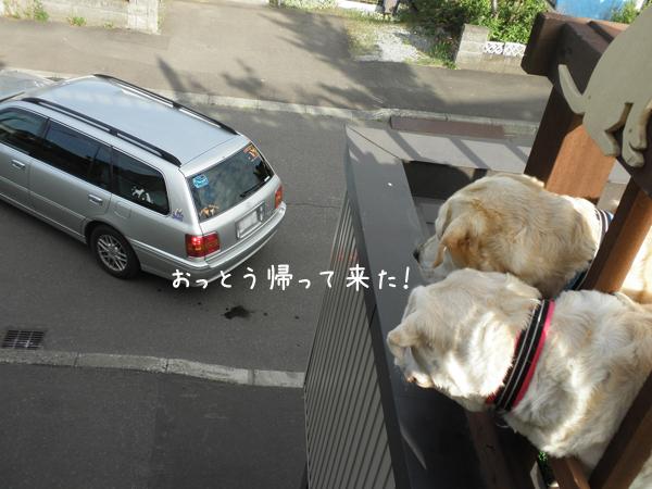 baru1_20120723220457.jpg