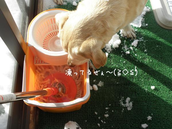 baru1_20121202195438.jpg