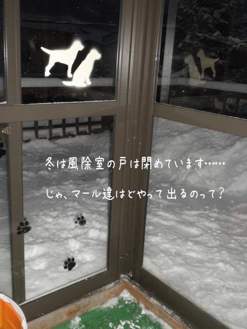 baru1_20121208202254.jpg