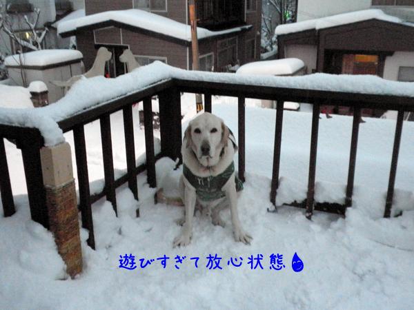 baru1_20121212191836.jpg