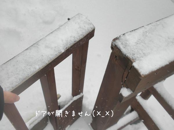 baru1_20130303220345.jpg