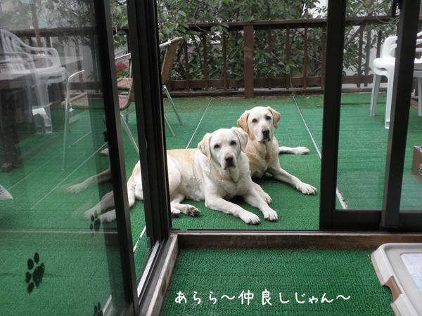 baru2_20120609220033.jpg