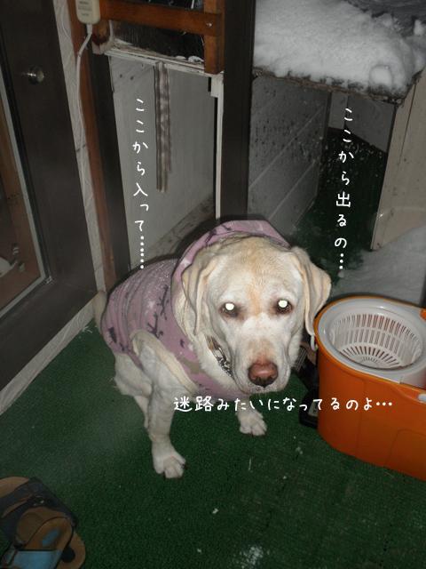 baru2_20121208202300.jpg