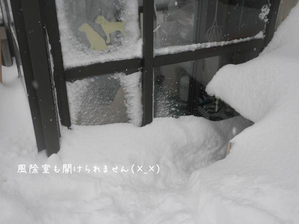 baru2_20130303220351.jpg