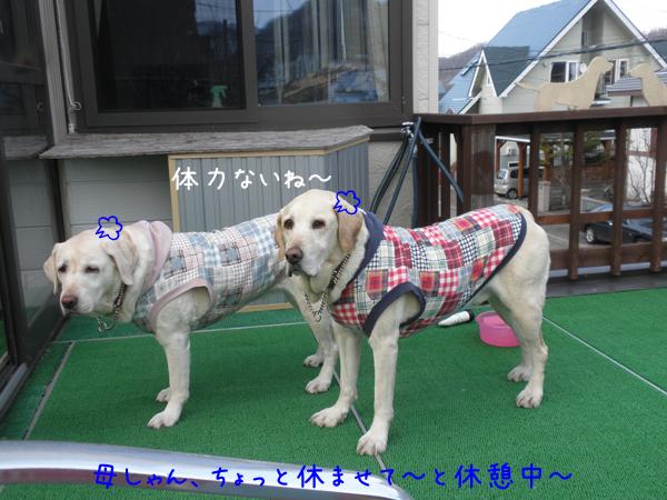 baru_20120419221105.jpg