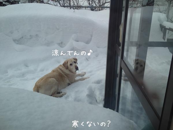 baru_20130121193410.jpg