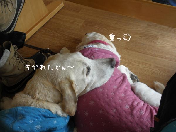 cafe_20121122214810.jpg