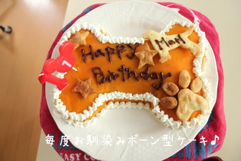cake1_20120919213658.jpg