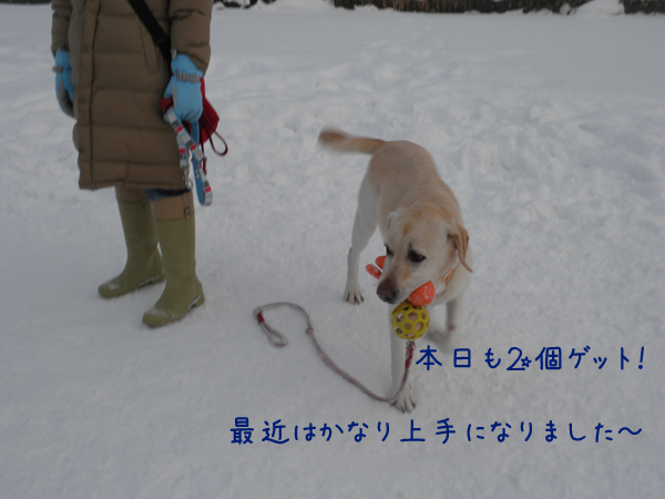 dai1_20121229215726.jpg