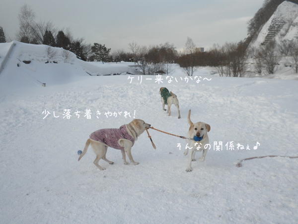 dai1_20130225205622.jpg