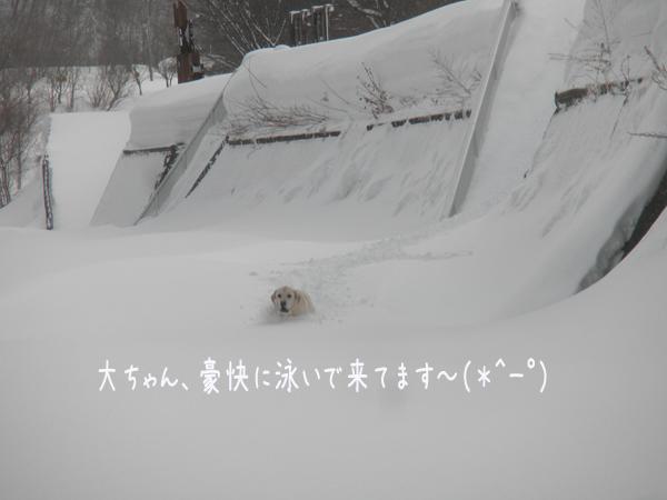 dai1_20130309224325.jpg