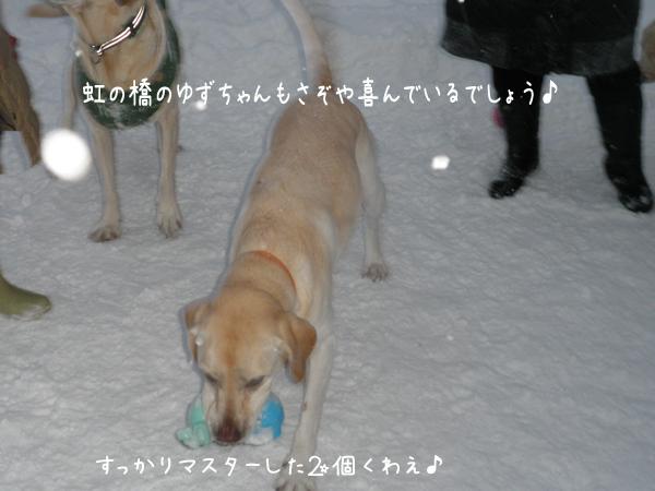 dai2ko_20121222195559.jpg