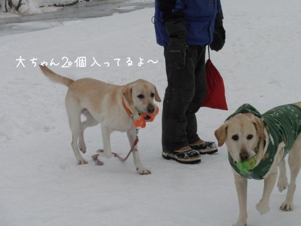 dai2ko_20130104192323.jpg