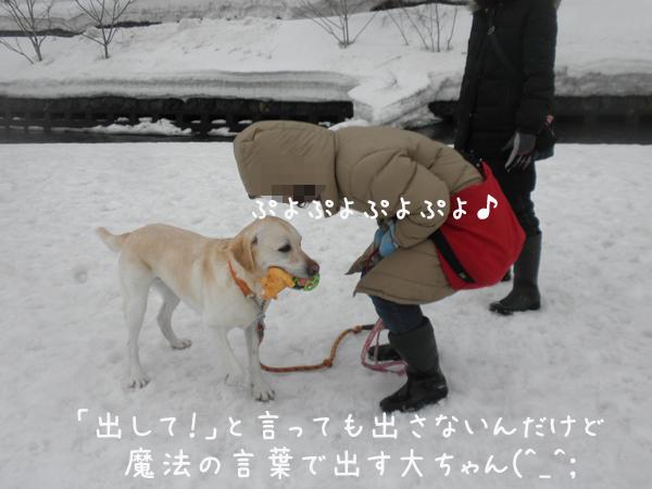 dai2ko_20130318212714.jpg