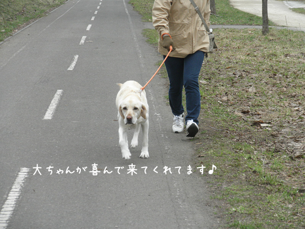dai_20120422180720.jpg