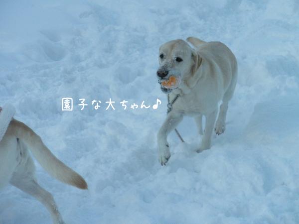 dai_20121223215403.jpg
