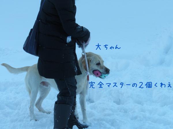 dai_20121226221152.jpg