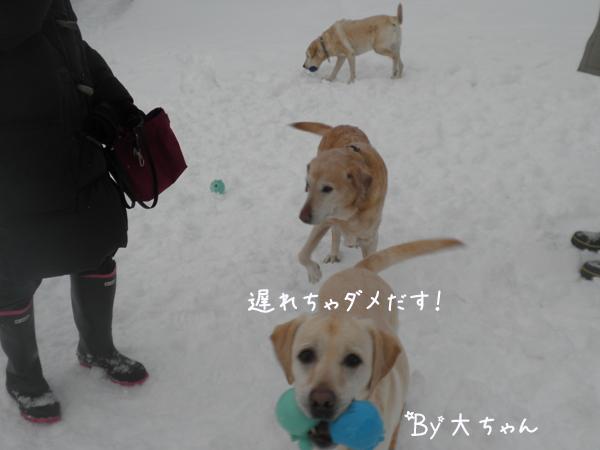 dai_20130125210948.jpg