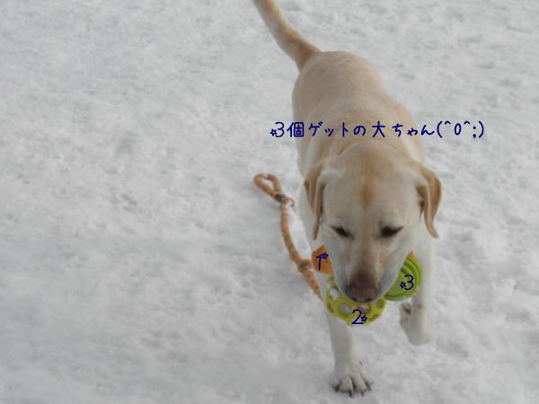 dai_20130306214843.jpg