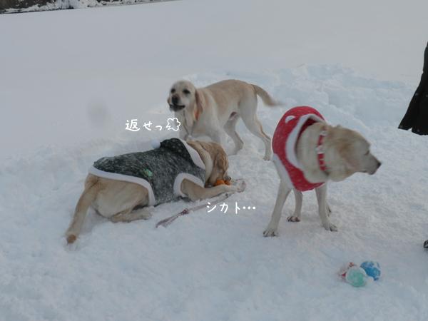 daimaru2_20121220213612.jpg