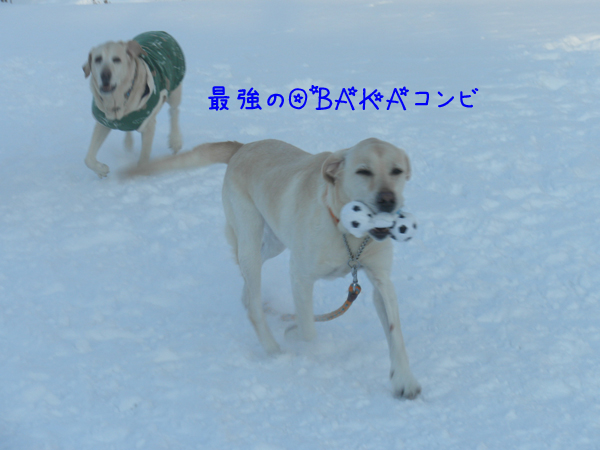 daimaru_20130113195616.jpg