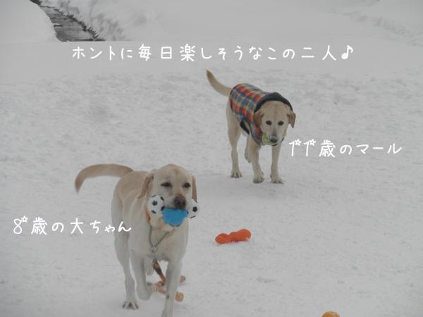 daimaru_20130114211450.jpg