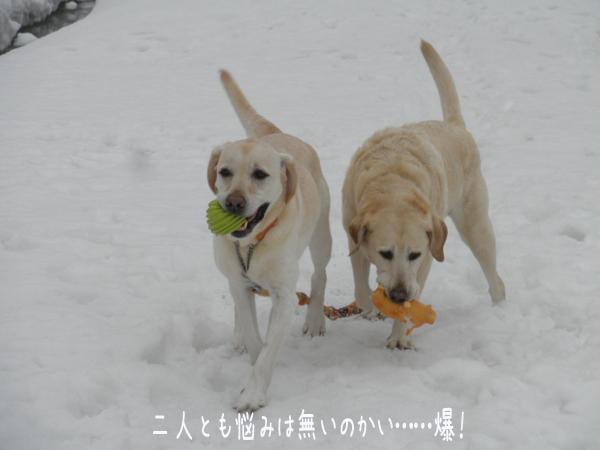 daimaru_20130308204025.jpg