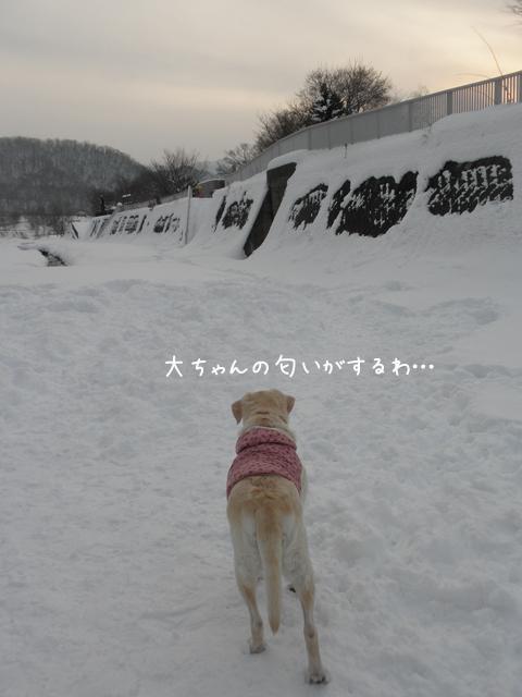 daimati_20121215214235.jpg