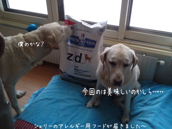 food_20121218212413.jpg