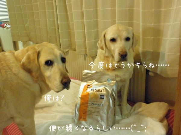 food_20130206194200.jpg