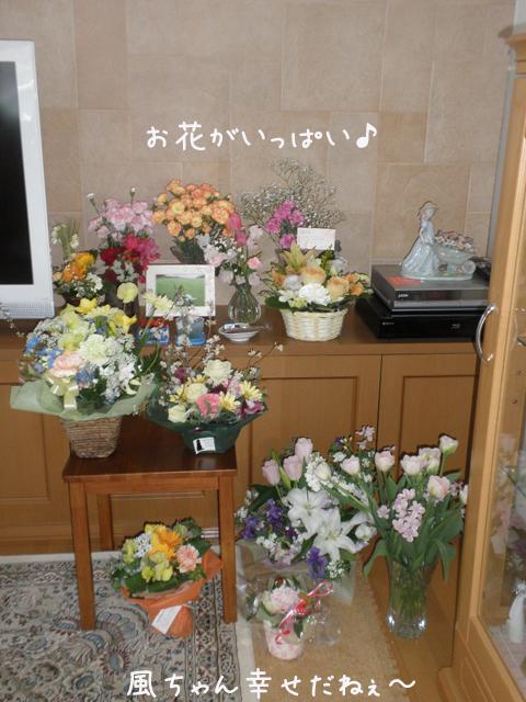fuuta2_20130319165637.jpg
