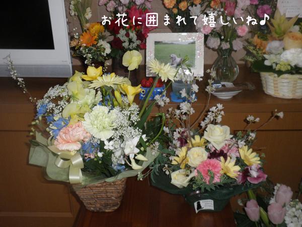 fuuta3.jpg