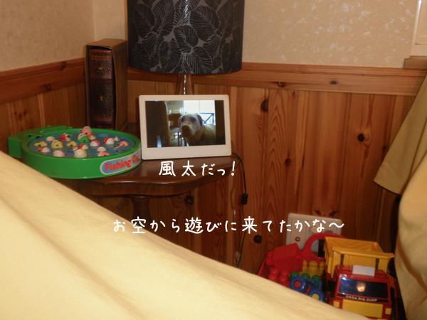 fuuta_20120824220654.jpg