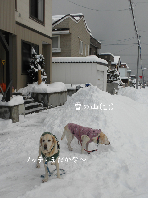 genkan_20121212191841.jpg
